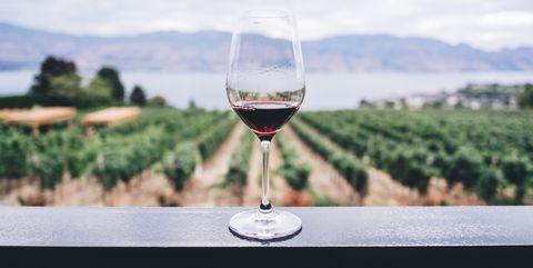 top 10 wijnen