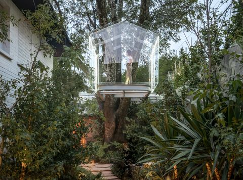 La casa del árbol reinterpretada en cristal por Broissin Architects
