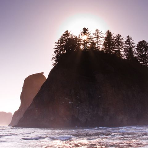 Rock, Wave, Sky, Sea, Tree,