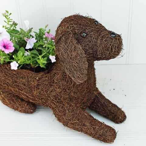 Labrador Puppy Planter