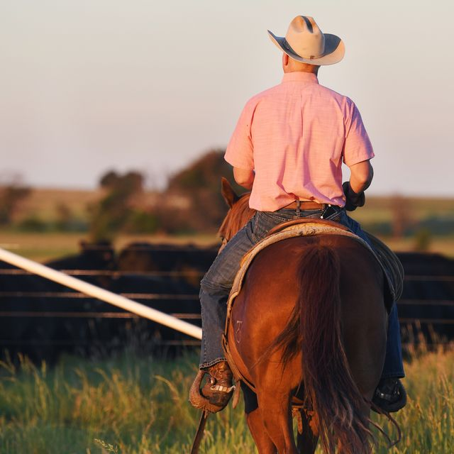 ladd drummond on his horse on drummond ranch