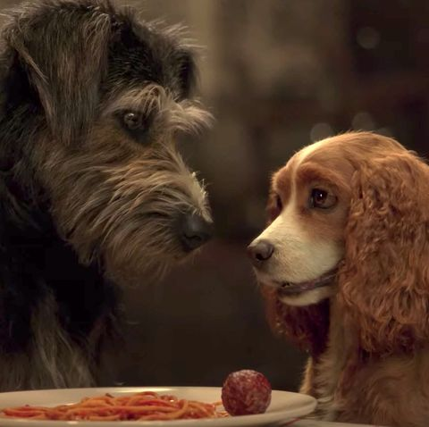 Lady And The Tramp Star Reveals She Adopted One Of The Dogs