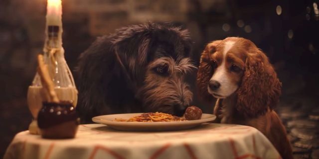 The Trailer for Disney's Live-Action 'Lady and the Tramp' Is All I Need This Tuesday