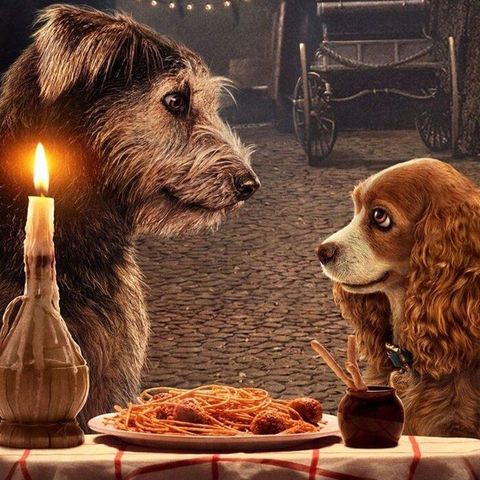 lady and the tramp disney plus