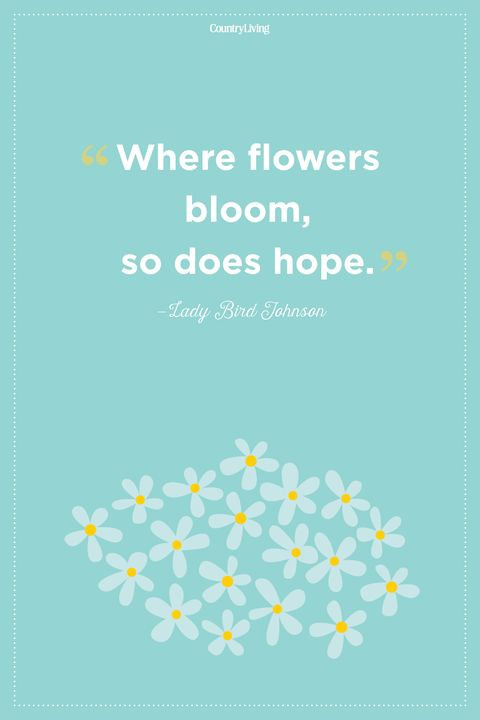 lady bird johnson flower quote