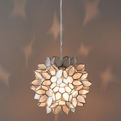 Lighting, Light fixture, Chandelier, Ceiling fixture, Ceiling, Interior design, Plant, Lighting accessory, Conifer cone, Pine,