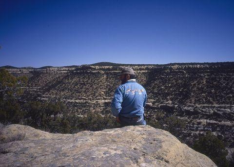 Sky, Rock, Wilderness, Mountain, Cloud, Badlands, Tree, Geology, Formation, Landscape,