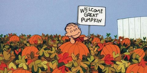 Image result for it's the great pumpkin charlie brown
