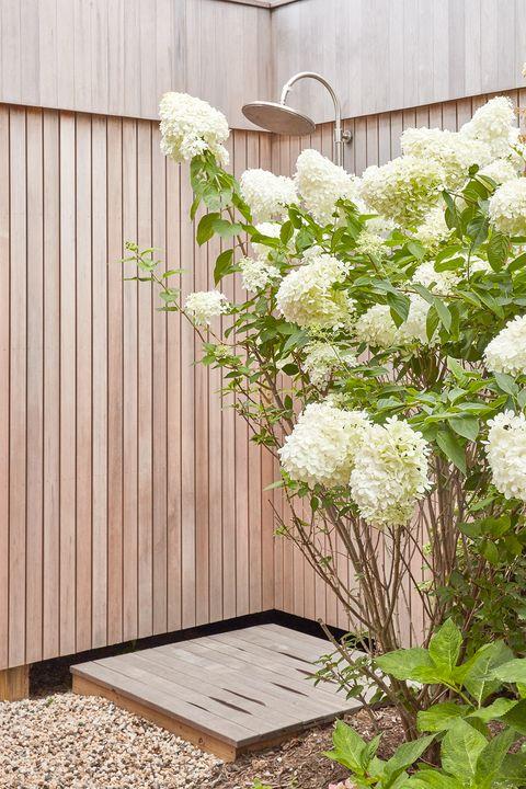 Flower, White, Flower Arranging, Plant, Cut flowers, Floral design, Floristry, Bouquet, Botany, Hydrangea,