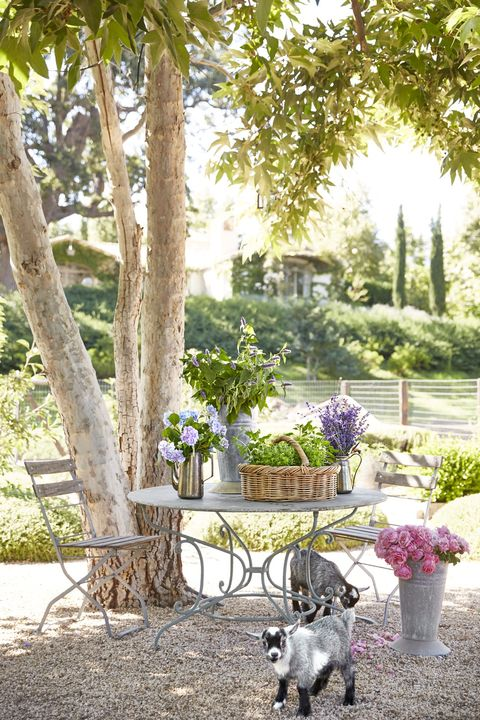 landscaping ideas seating