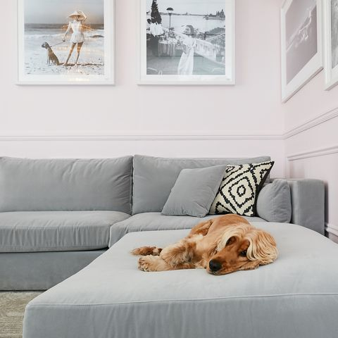 5 Rules To Consider Before You Buy A Sofa - Choosing A Sofa