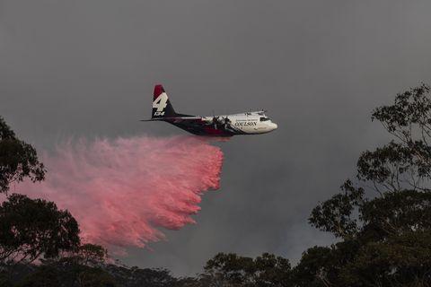 NSW On Severe Bushfire Alert As Weather Conditions Worsen