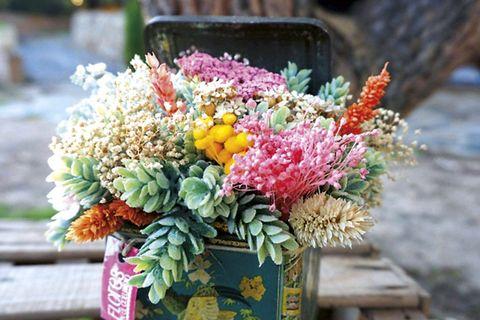 Jardín: Flores en lata vintage