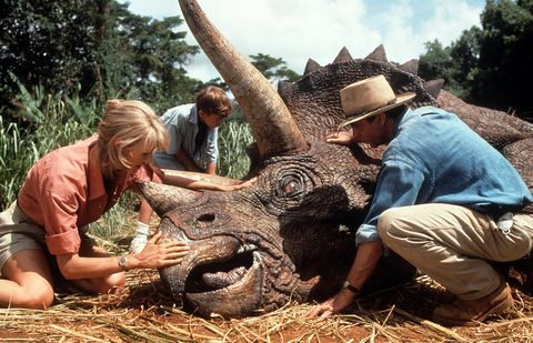 Laura Dern And Sam Neill In 'Jurassic Park'