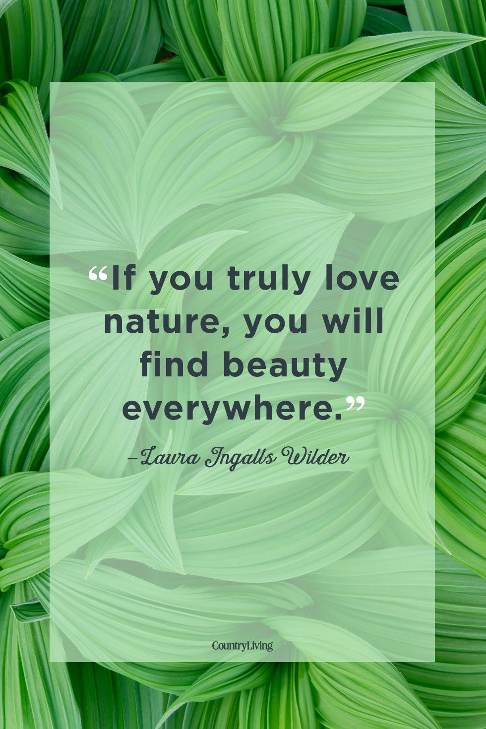 Image of: Life Nature Quotes Tumblr 25 Best Nature Quotes Inspirational Sayings About Nature