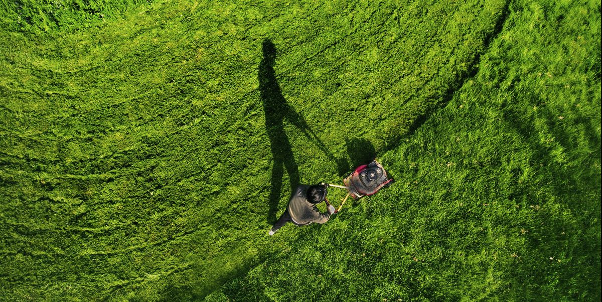 Best Way To Mow Lawn How Cut Gr