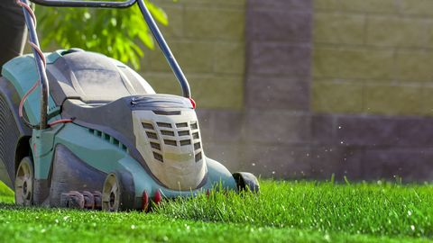Lawn mower cutting green grass in backyard