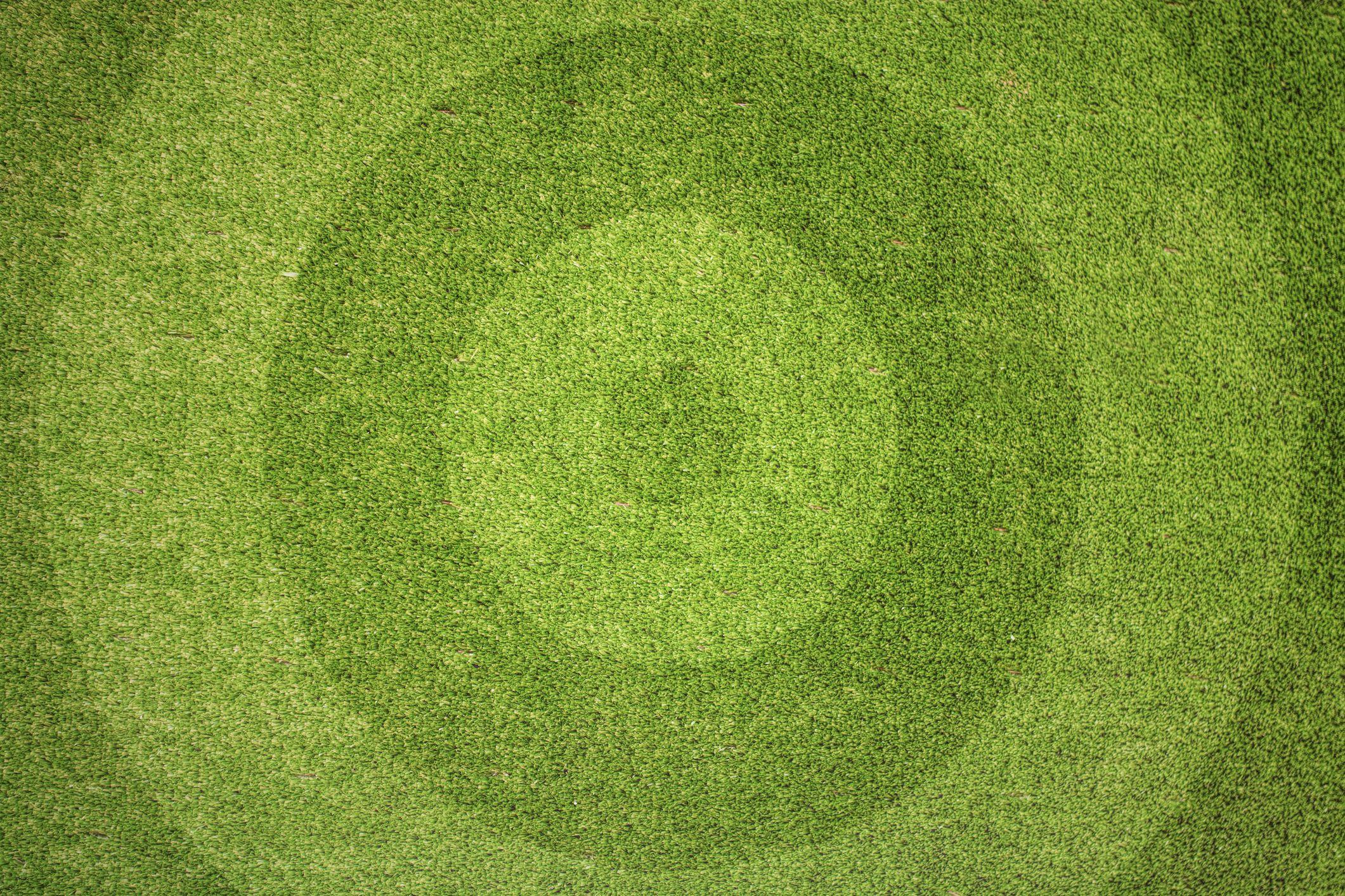 Patterned lawn - Argos garden trends 2018