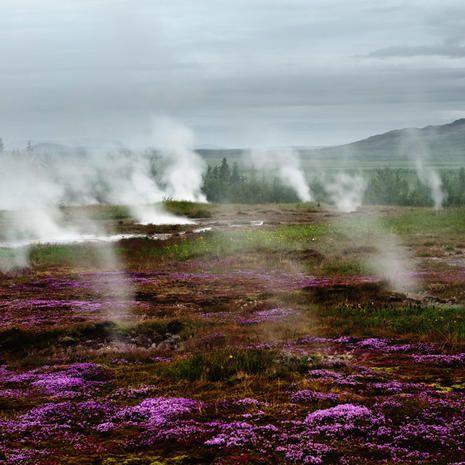 Natural landscape, Plant community, Purple, Atmospheric phenomenon, Highland, Ecoregion, Lavender, Wilderness, Geology, Violet,