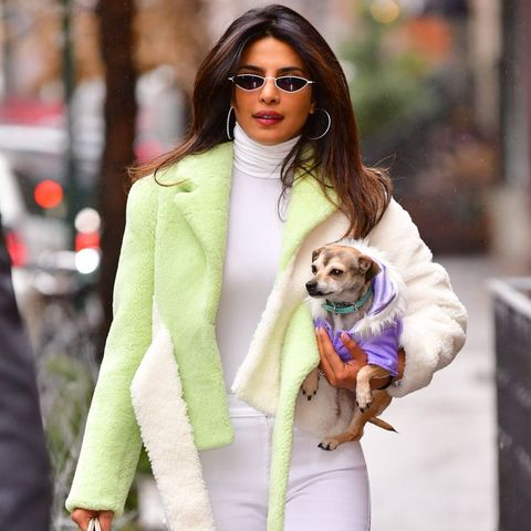 Clothing, Street fashion, Fashion, Companion dog, Pink, Outerwear, Coat, Dog walking, Fur, Jeans,