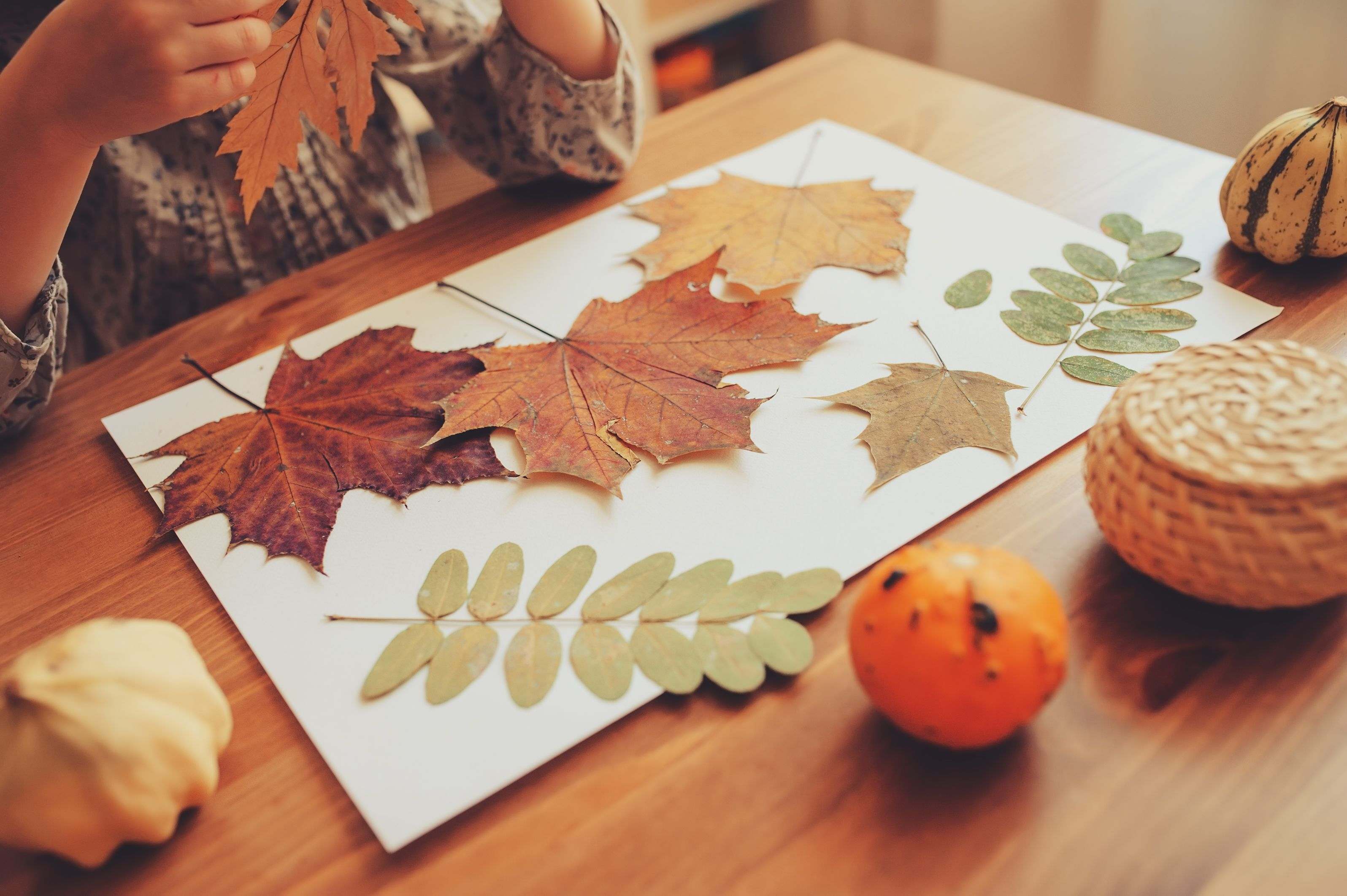 39 Best Fall Leaf Craft Ideas - DIY Decorating Projects With Leaves