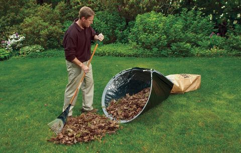 Leaf Loader Lawn Clean-Up Tool