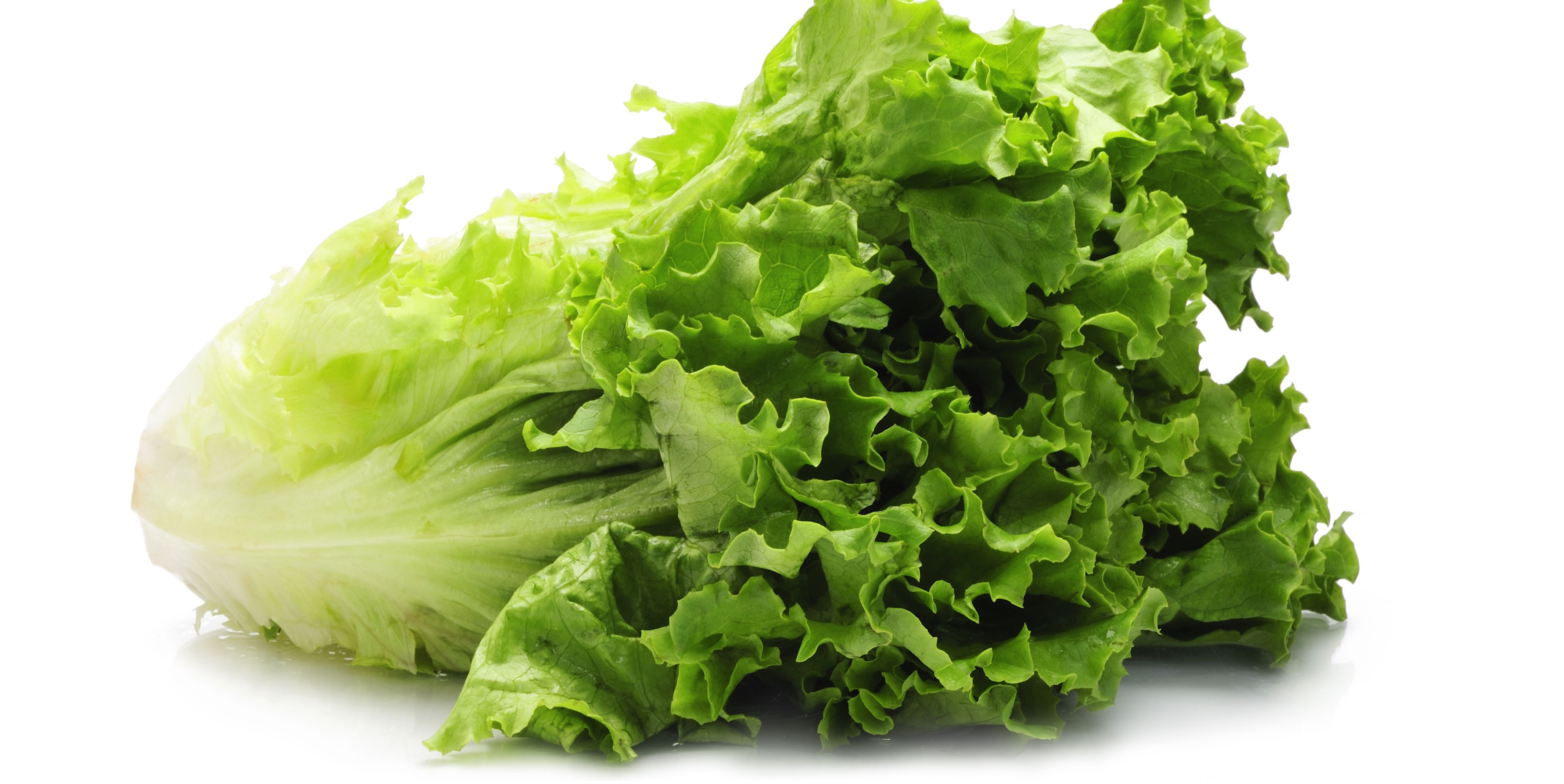 Stopping Eating Romaine Immediately, Health Officials Warn