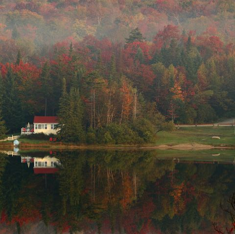 fall foliage Leaves begin turning color in the early