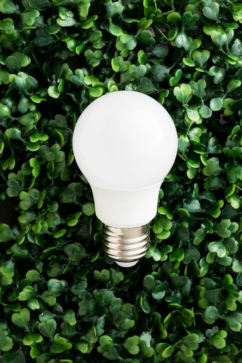 Ktoré žiarovky navodia v domácnosti tú správnu atmosféru?