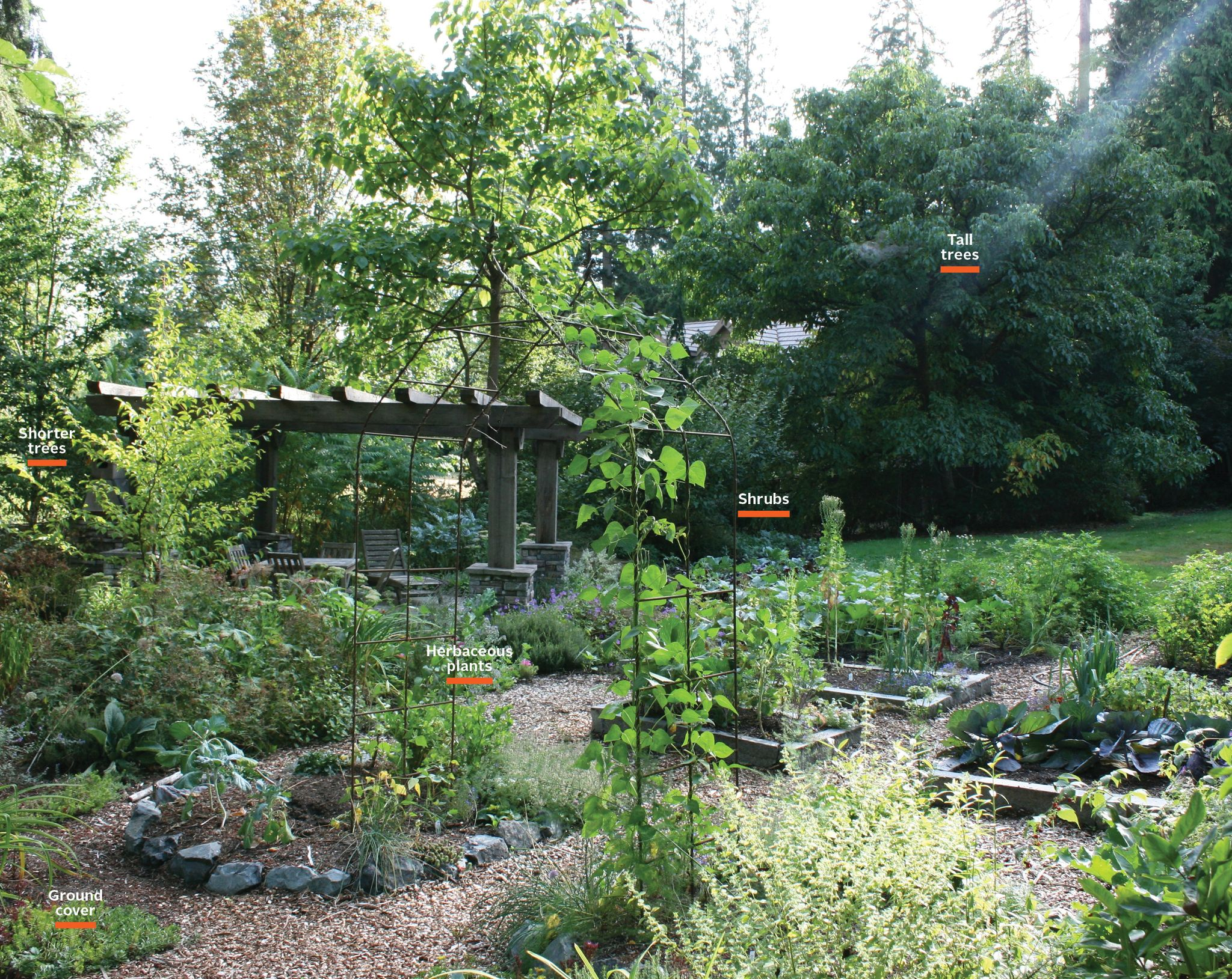 How To Plant a Garden That Takes Care of Itself