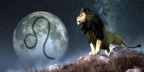 leo is the fifth astrological sign of the zodiac its symbol is the lion