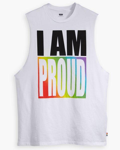 camiseta orgullo, camiseta orgullo gay, camiseta orgullolgtb, camiseta orgullo lgbt