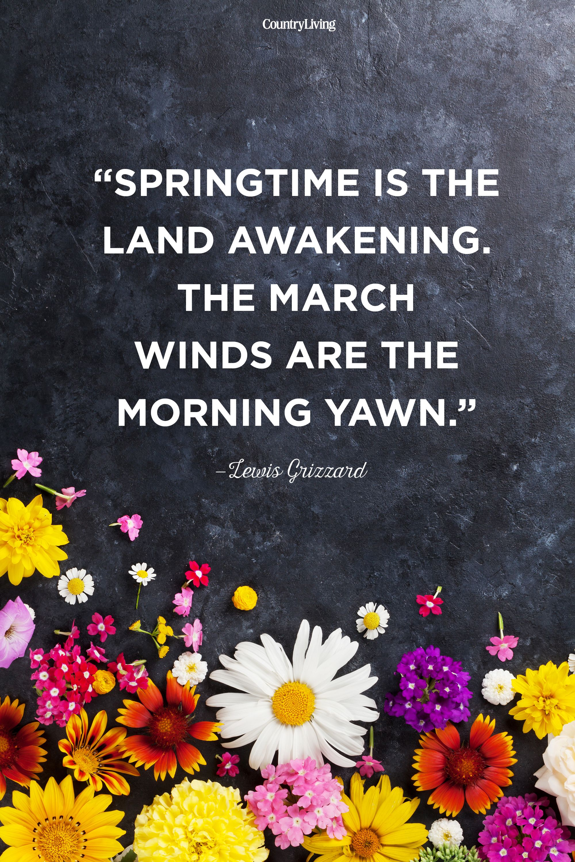 Superb 20 Hy Spring Quotes Motivational Sayings About
