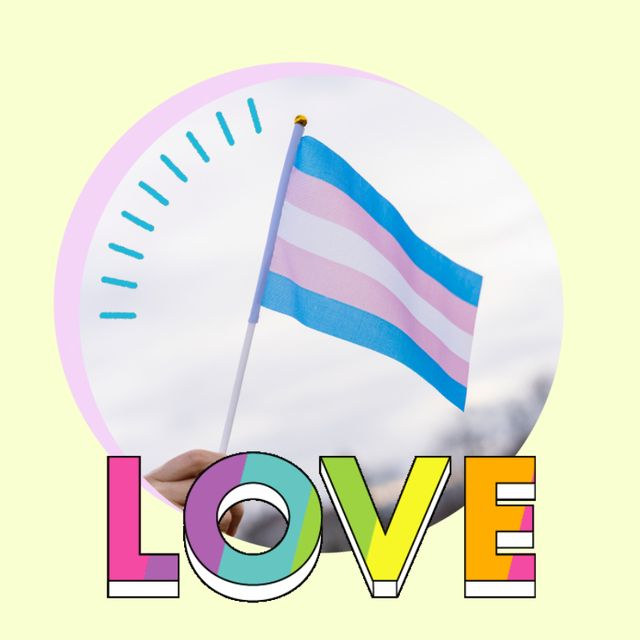 la bandera transexual