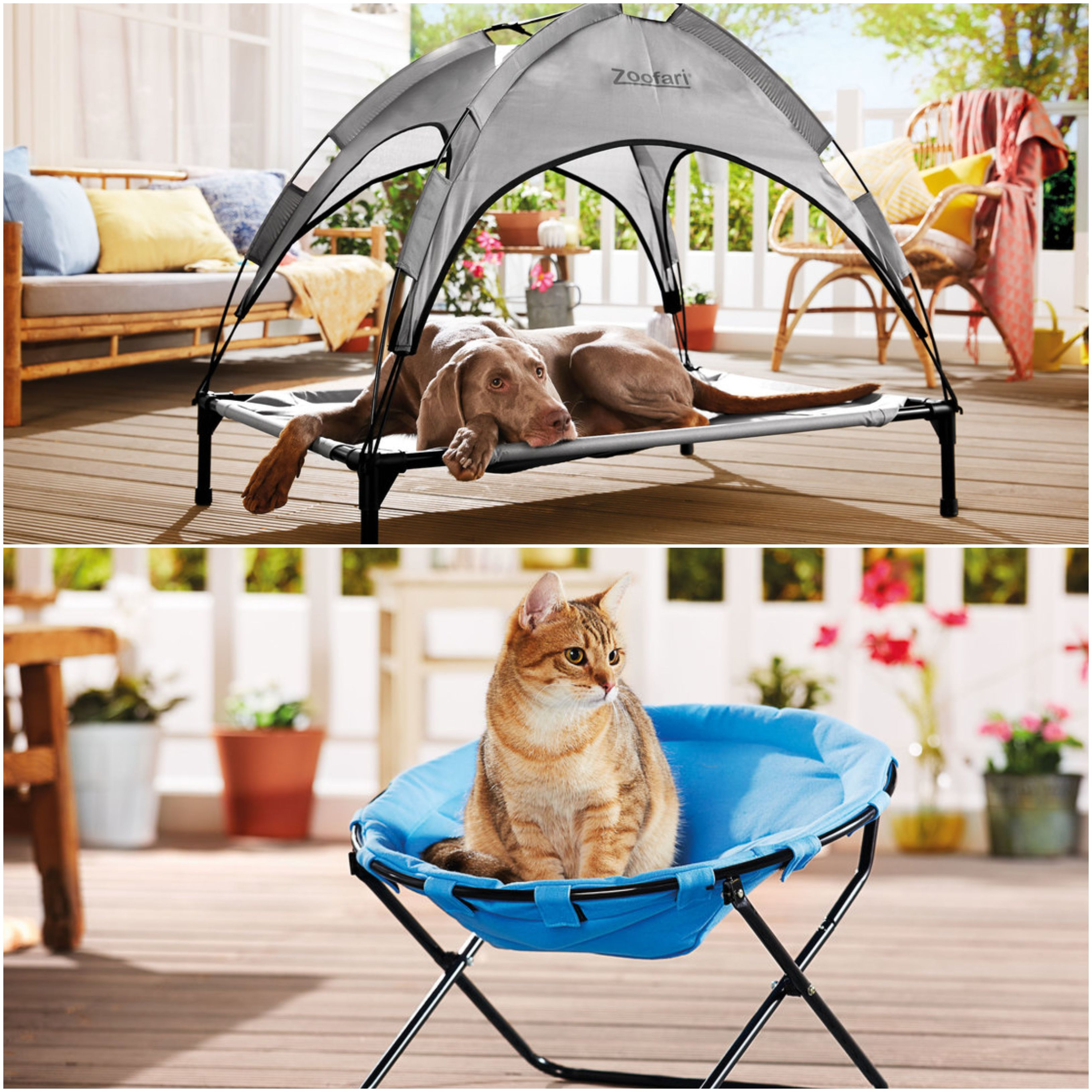 Lidl's dog bed with sun shade, cat chair and pets teepee are must-have summer buys