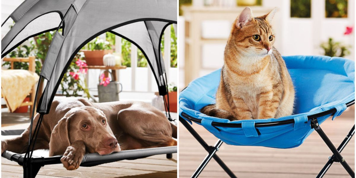 Lidl Selling Dog Bed With Sun Shade Cat Chair For Less Than 20