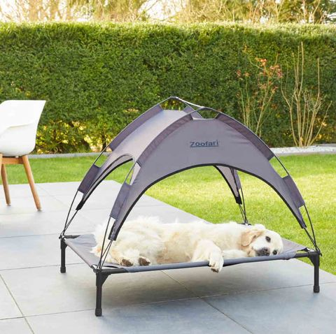 lidl launches new dog sun bed just in time for summer