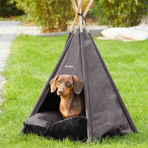 lidl is selling a pet teepee tent as part of its weekly offers