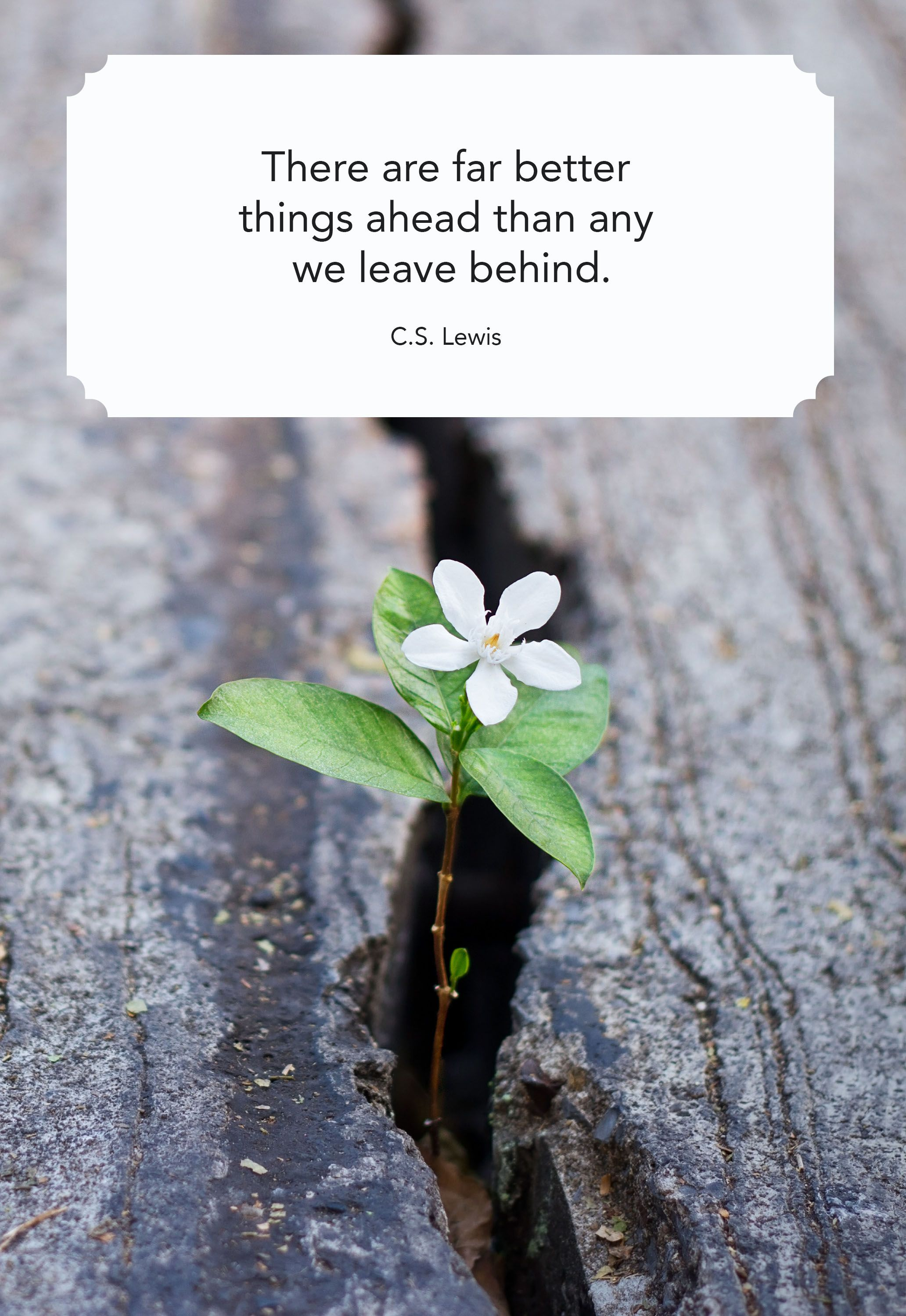20 Best Quotes About Change   Inspiring Sayings to Navigate Life ...