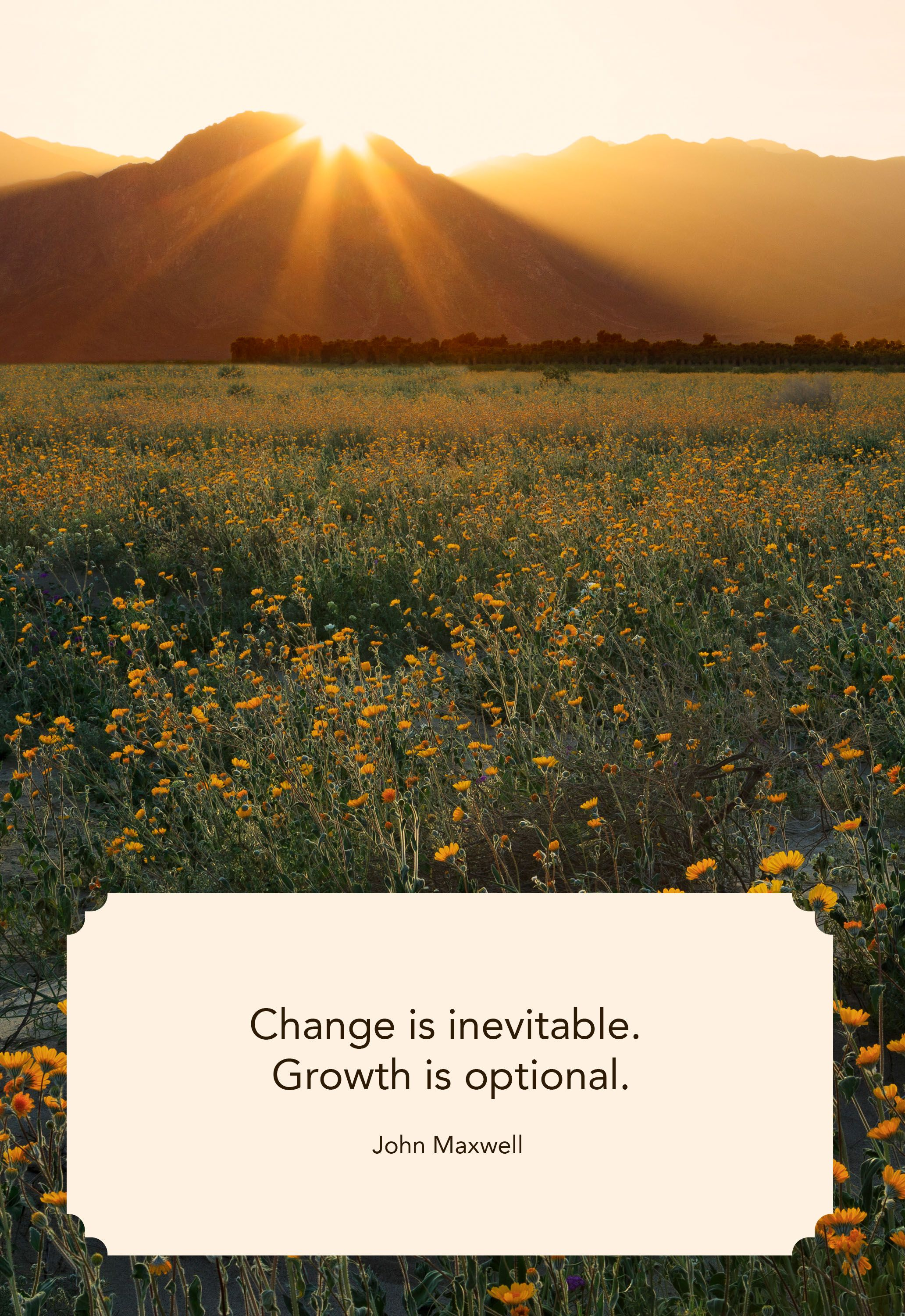 25 Best Quotes About Change - Inspiring Sayings to Navigate ...