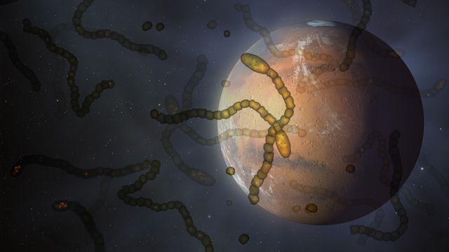 life on mars, conceptual illustration