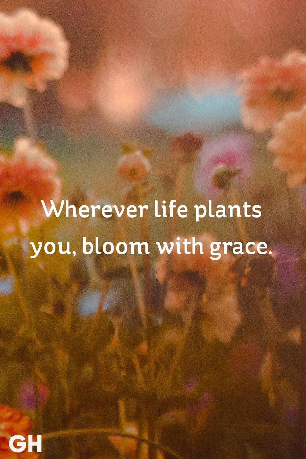 30 Inspirational Quotes About Life Beautiful Famous Life Quotes