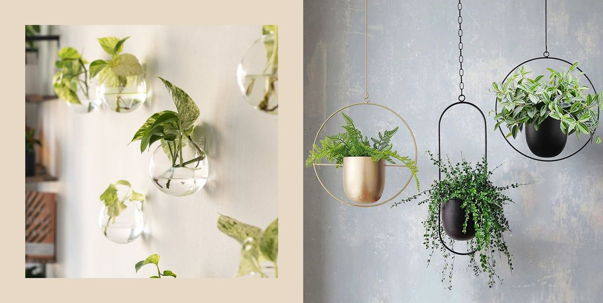Just the Best Wall Planters to Fill the Empty Space on Your Walls  and in Your Heart
