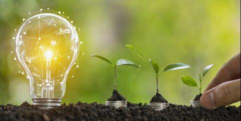 consejos para ahorrar luz y cuidar el planeta
