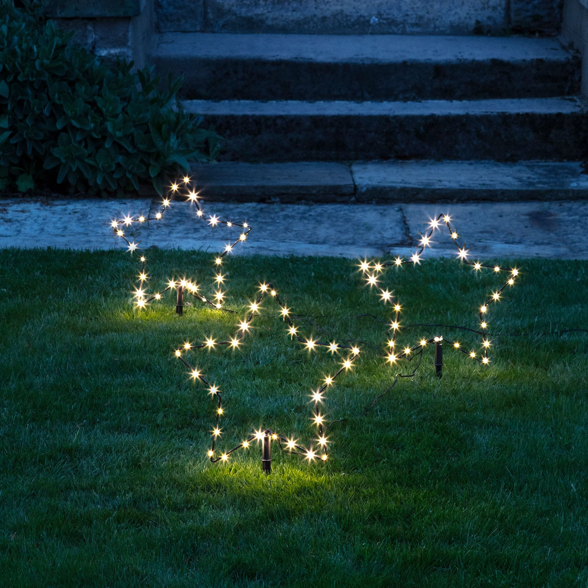 The Best Outdoor Christmas Lights For Your Home 15 Outside Wiring Landscape With Colored Shades