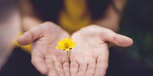 i benefici del perdono