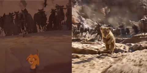 The Lion King 2019 Comparing Remake Animation To The Original