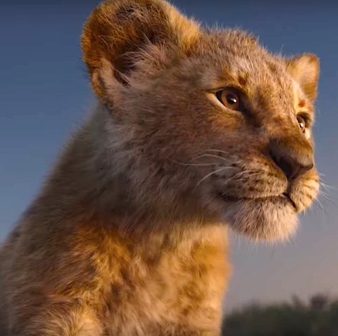 Lion King 2019 Trailer Beyonce Seth Rogen Star In The