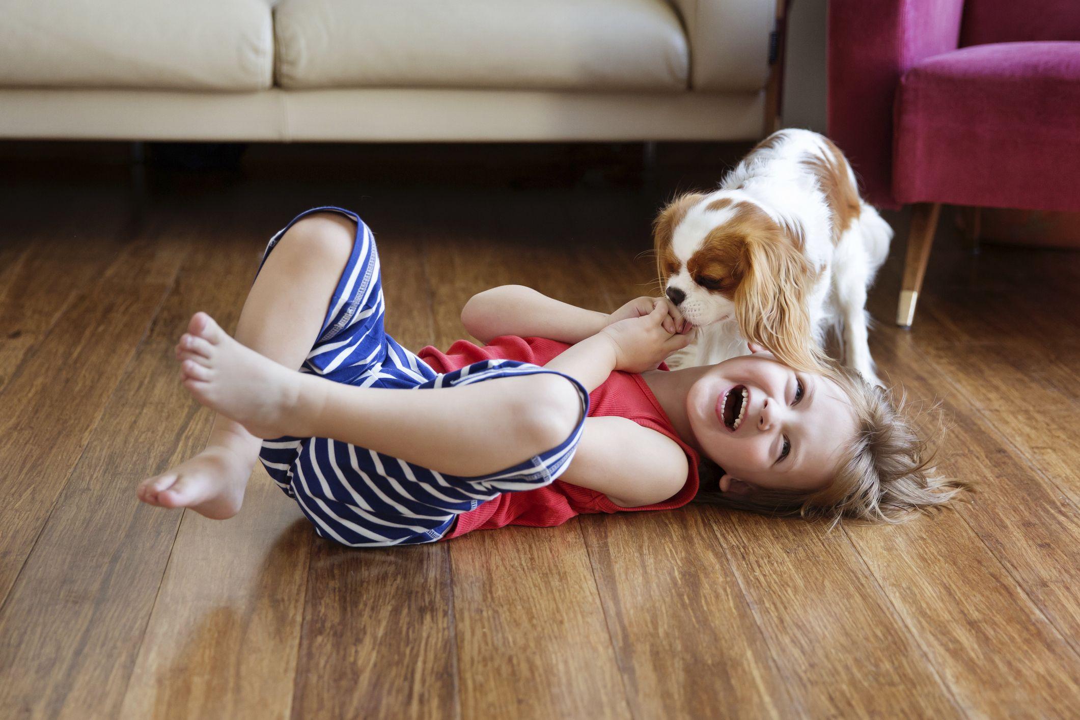20 Best Family Dogs - Best Dog Breeds for Kids