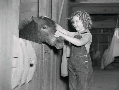 shirley temple petting her pony
